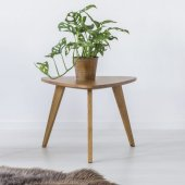 Green chair, small table with a plant and fur on a floor in white room